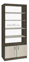 Стеллаж с дверьми СТ-38907, размеры: 200х90х35 см.